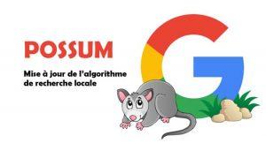 possum-google-mise-a-jour