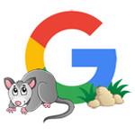 Possum, la mise à jour de l'algorithme de recherche locale de Google