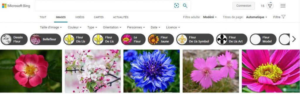 Fleurs Bing