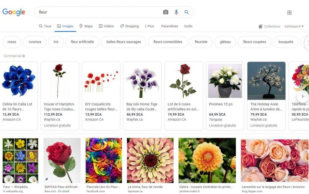Fleurs Google