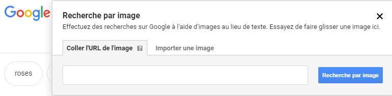 Recherche images Google