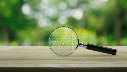 Recherche organique marketing digital